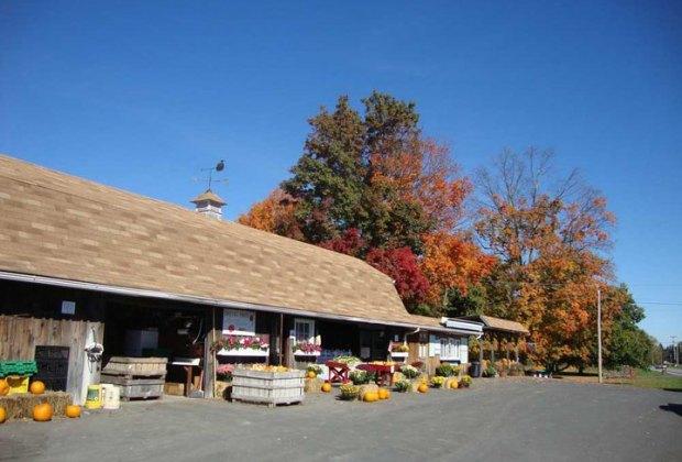 Dressel Farms store framed by beautiful fall foliage