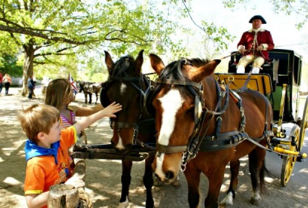 Stopping to Pet the Horses after a Carriage Ride.