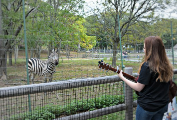 The Movement at Berklee visits Franklin Park Zoo