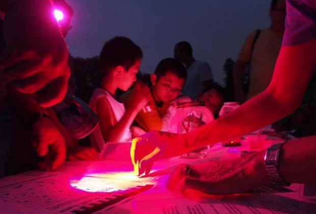 Duke Farms will be aglow for the Firefly Festival on Saturday. Photo courtesy of Duke Farms
