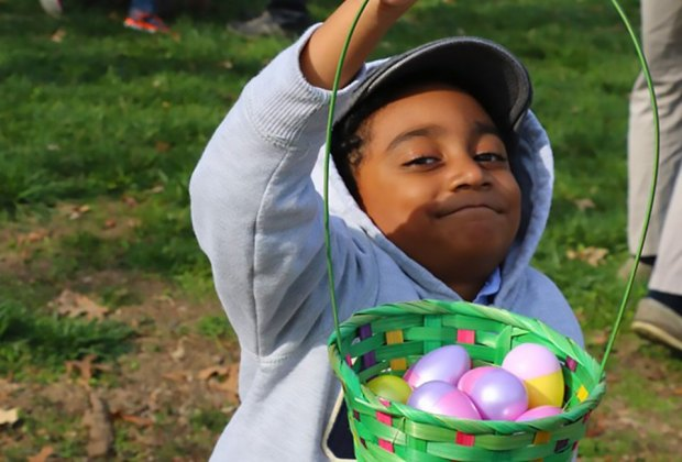 The hunt at Benner's Farm features more than 20,000 Easter eggs. Photo courtesy of the farm