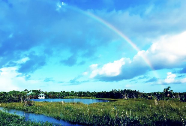 See Everglades National Park on a FREE admission day. Photo courtesy the park