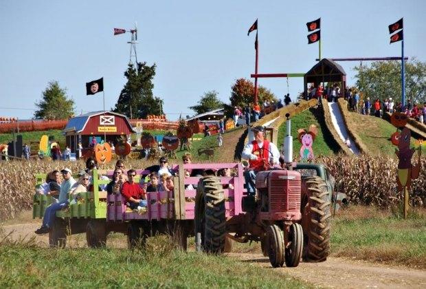 Fairfax Fall Festival. Photo courtesy of Visit Fairfax