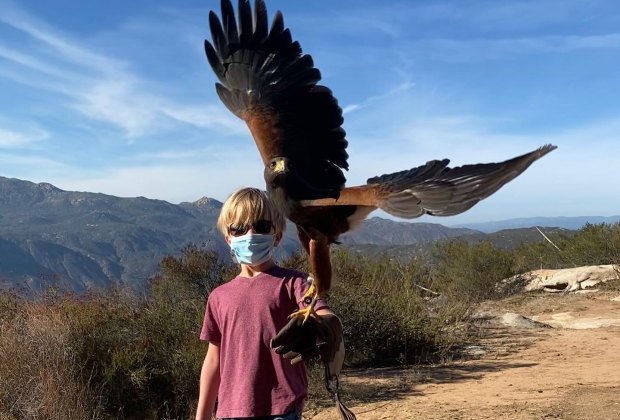 Sky Falconry teaches kids how to fly hawks and falcons