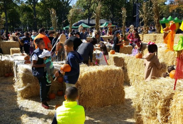 Celebrate fall with crafts, games, music, live entertainment, pumpkins, and more! Photo courtesy of NYC Parks