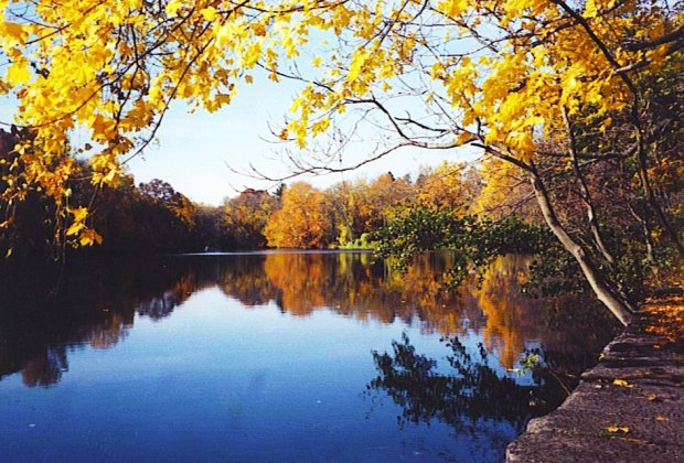 Soak up the fall splendor on a walk along Sheldrake's trails. Photo courtesy of the Sheldrake Environmental Center