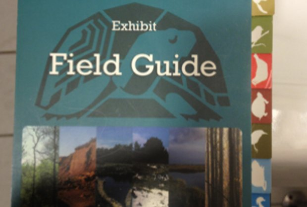A field guide leads visitors through the displays.