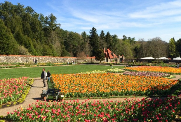 Ornate flower gardens at the Biltmore Estate