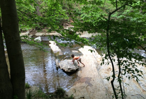 Kids play in the stream at the NC Botanical Garden