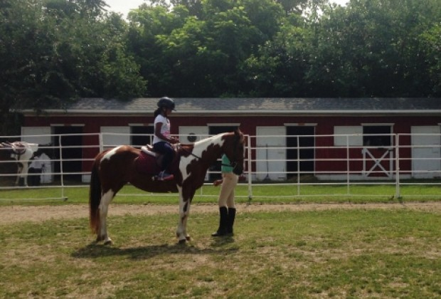 New York City Riding Academy offers horseback riding lessons