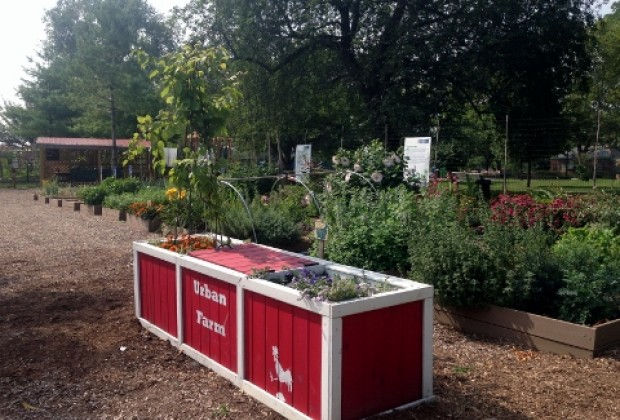 This Urban Farm is open to the public