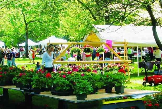 Celebrate spring at Geraniumfest and Kids Days in Lynnfield. Photo courtesy of the festival