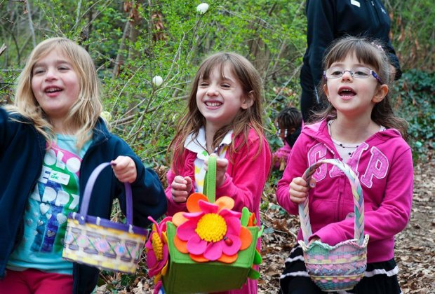 Take part in an environmentally-friendly egg hunt at Greenburgh Nature Center. Photo courtesy of the center