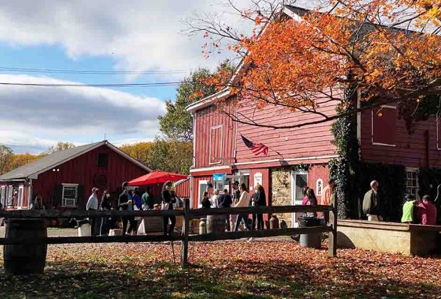 Guests gather at the Hacklebarney Farm Cider Mill