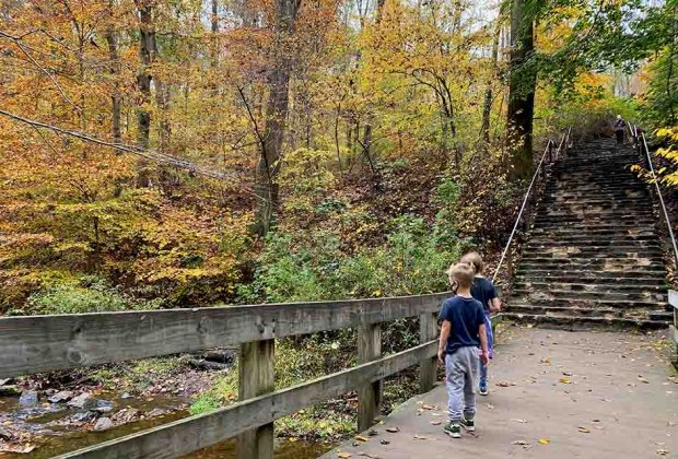 kids peer over a bridge into a river at Hacklebarney State Park