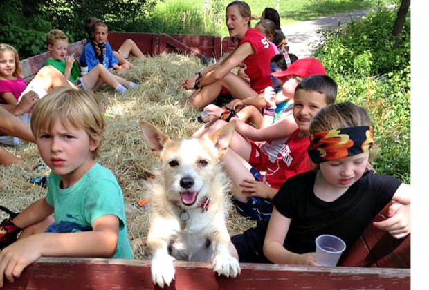 Halloween Hayrides can be sweet, not spooky—just ask this furry friend! Photo courtesy of Flamig Farm