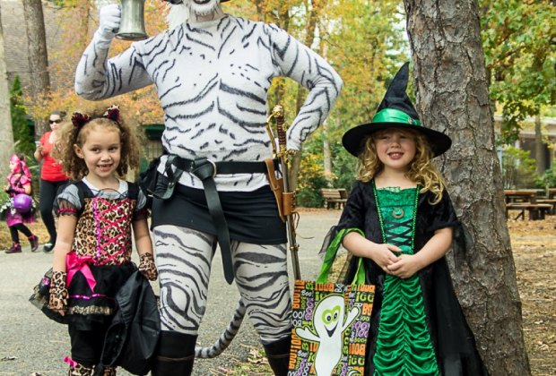 Trick-or-treat and interactive performances are all part of the fun at HalloWheaton. Photo courtesy of the event