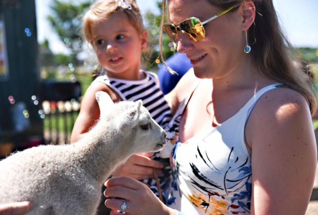 Moms enjoy FREE admission to Harbes Family Farm this weekend. Photo courtesy of the farm