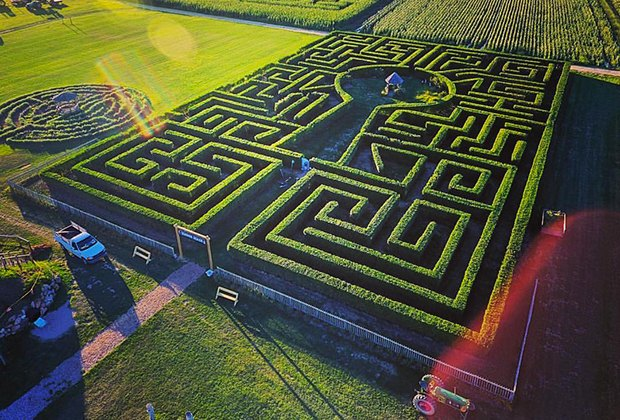 Harbes Family Farm on the North Fork offers four mazes for autumn entertainment.