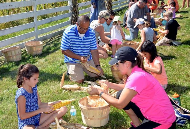 Historic Longstreet Farm's Harvest Home Festival features corn husking competitions and other old-fashioned fun. Photo courtesy of Monmouth County Park System