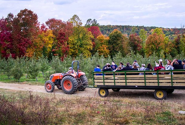 Enjoy the scenery on a hayride at Harvest Moon Farm & Orchard in North Salem.