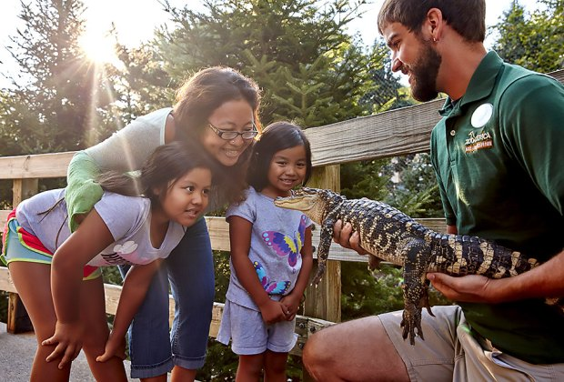 Hershey, PA is way more than roller coasters and chocolate: ZooAmerica is a great place to slow down and meet some new friends. Photo courtesy of Hersheypark