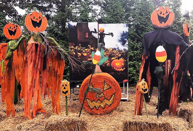 Head to the Fall Festival at Hicks Nursery for some not-too-scary seasonal entertainment. Photo courtesy of the nursery
