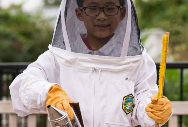 Learn more about honey as you explore a beehive and try on a beekeeper's suit. Photo courtesy of NYBG