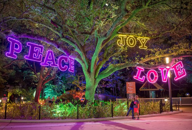 Zoo Lights at the Houston Zoo