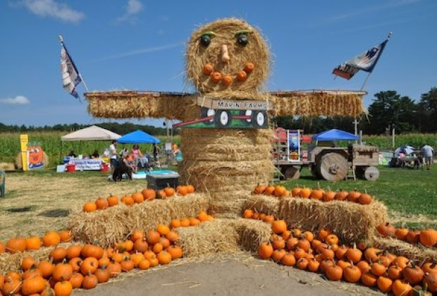 New England Pumpkin Patches with Bonus Fun for Families ...