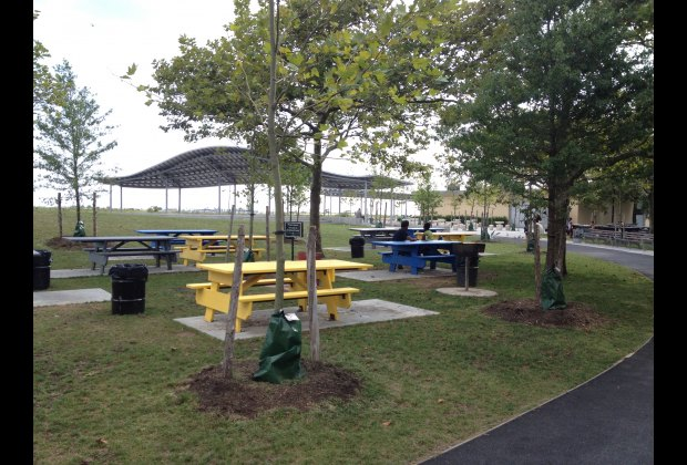 Picnic tables and barbecue grills