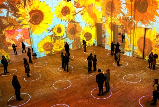 Immersive Van Gogh Exhibit Is Coming To NYC: See Van Gogh's Sunflowers 3 stories high