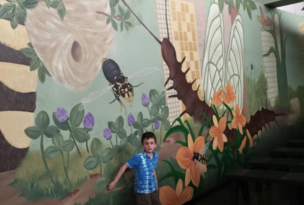 The interior of Insectropolis is decorated beautifully