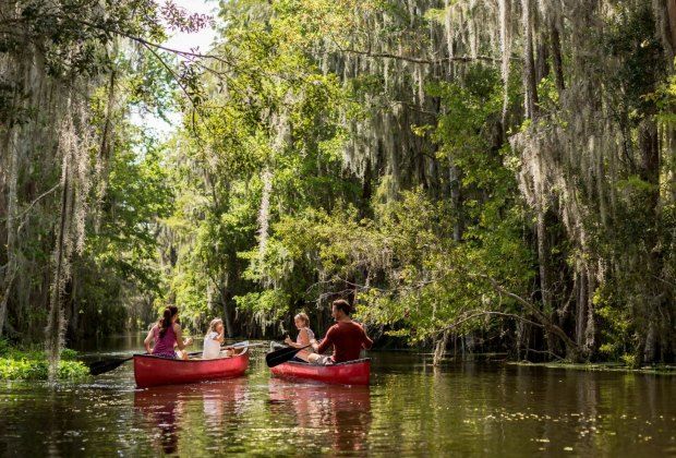 An eco-tour of Shingle Creek. Image courtesy the Grande Lakes Adventure Experiences