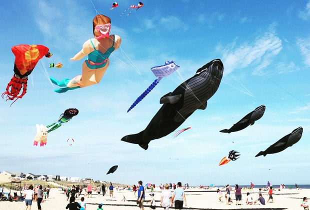Watch amazing kites soar over the beach at the LBI International Kite Festival. Photo courtesy of the event