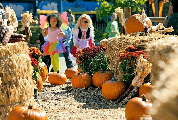 Knott's Spooky Farm. Photo courtesy of Knott's Berry Farm
