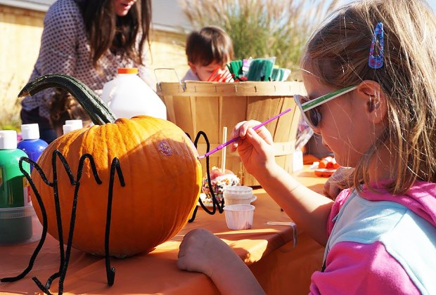 Pick and decorate a pumpkin at Fishkill Farms. Photo courtesy of the farm