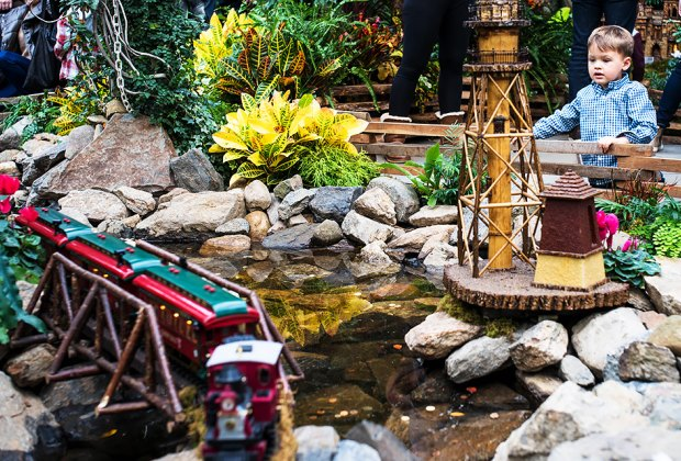 Watch in amazement as model trains zoom through the magical display. Photo courtesy of NYBG