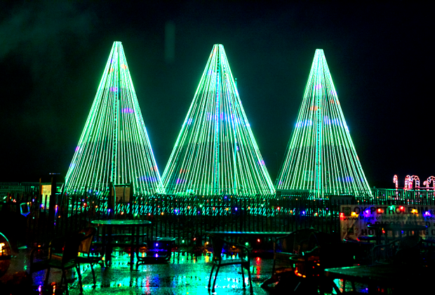 LED Christmas trees are one of the Magic of Lights highlights