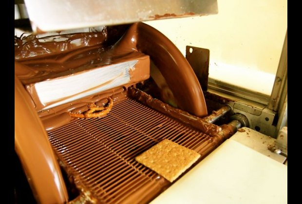 Cookies, pretzels and other treats get covered in chocolate on a 40-foot<br /> long conveyor belt