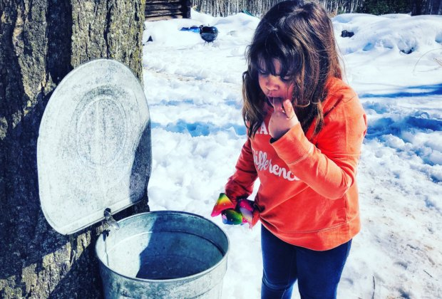 Celebrate Maple Sugar with a real maple taste. Photo by Ally Noel