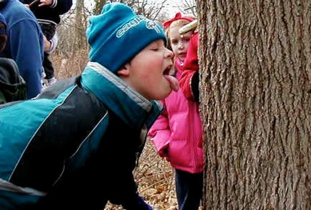 Learn all about maple sugaring at Washington Crossing State Park. Photo courtesy of the NJ Dept. of Environmental Protection