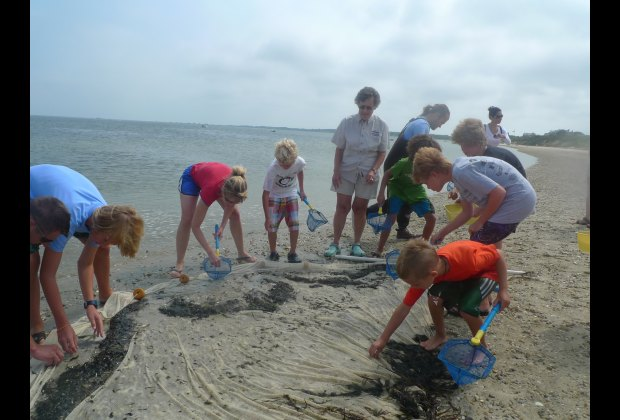 Marine Ecology Field Trip with the Maria Mitchell Association (MMA).