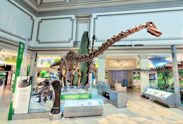 The new David H. Koch Hall of Fossils  –– Deep Time exhibit at the Smithsonian Institution National Museum of Natural History opened on June 8, 2019. Photo courtesy of the Smithsonian Institution