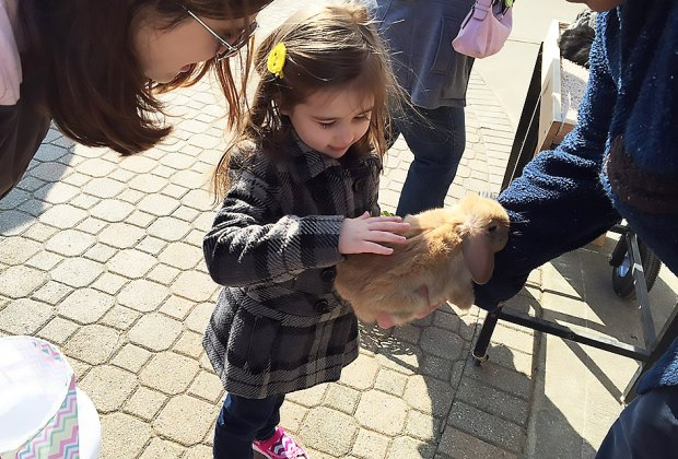 Spend the day at the Hoppy Easter Festival for treats, a visit by Mr. & Mrs. Easter Bunny, the egg hunt and real bunnies and chicks to pet! Photo courtesy of the Naperville Junior Women's Club