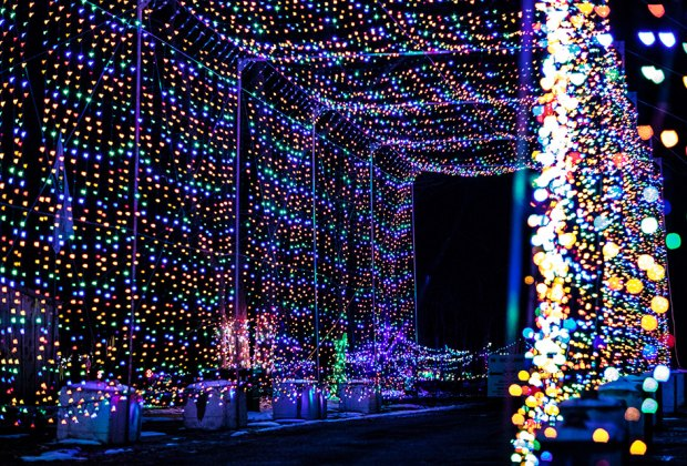 The Magic of Lights Things to Do Over Holiday Break with Long Island Kids