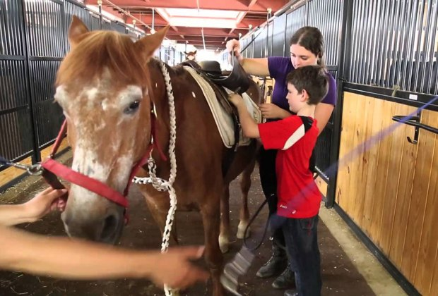 Learn to saddle up your horse at the New York Equestrian Center. Photo courtesy of the center