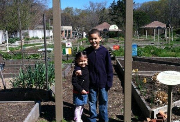 Global Garden in the Ruth Rea Howell Family Garden