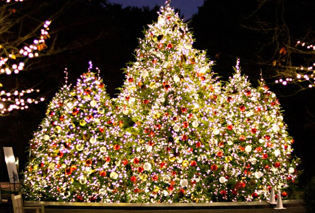 Take part in a special tree lighting with caroling at the NYBG. Photo courtesy of NYBG
