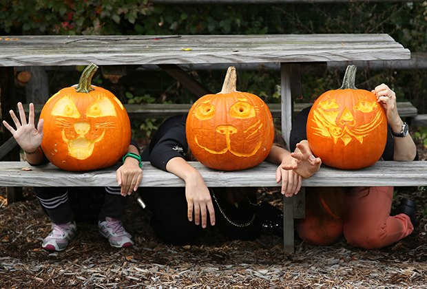 There's Halloween fun in store at the New York Botanical Garden.